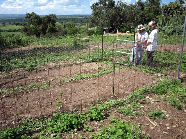 Family Garden in Sosnabar
